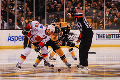 Jokinen and Krejci Face-off, Bruins v. Flames. Stock Photo