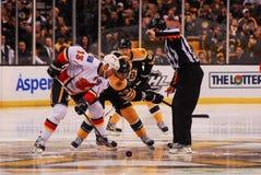 Jokinen and Krejci Face-off, Bruins v. Flames. Flames forward Ollie Jokinen (13) and Bruins center David Krejci (46) Face-off to start a game Stock Photo