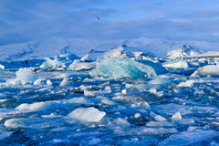 Jokkullsarlon, Islandia, lago helado Foto de archivo libre de regalías