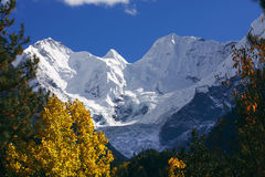 jokul Тибет Стоковые Изображения