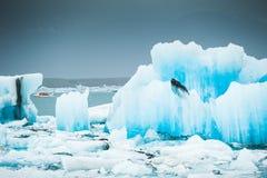 Jokulsarlon glacial lagoon, South Iceland Royalty Free Stock Photo