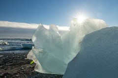 Jokulsarlon glacier black beach Royalty Free Stock Photo