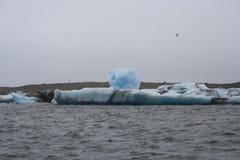 Jokulsarlon i Island Arkivfoton