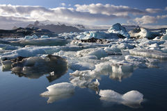 Jokulsarlon in Iceland. Icebergs in Jokulsarlon glacier lagoon on the south coast of Iceland Royalty Free Stock Images
