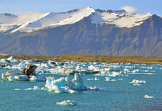 Jokulsarlon lagoon, Iceland. Amazing view of Jokulsarlon ice lagoon, Iceland Royalty Free Stock Photos
