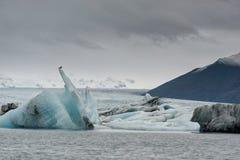 Jokulsarlon lodowa góra w tle i laguna Ptak jest na wierzchołku góra lodowa Zdjęcie Royalty Free