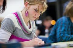 Joli étudiant universitaire féminin dans une salle de classe Photos libres de droits