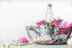 Joli arrangement de jardinage avec la boîte d'arrosage, le panier, les outils de jardinage et les fleurs roses Images libres de droits