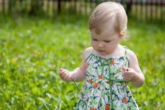 Joli bébé marchant en parc Images stock