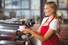 Joli barman remettant une tasse de café Image libre de droits