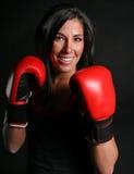 Joli boxeur Photographie stock