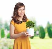 Joli femme asiatique avec un bac Photos stock