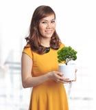 Joli femme asiatique avec une plante verte dans un bac Images stock