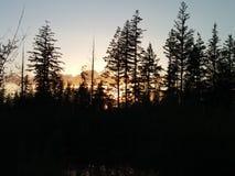 Joli lac Images libres de droits