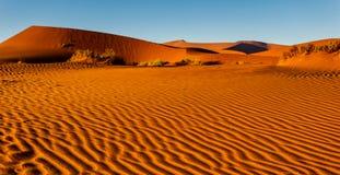 Joli modèle ondulé du sable enflé sur le plancher namibien de désert Photo libre de droits