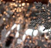 Joli ornement de flocon de neige avec des lumières d'or Photos libres de droits