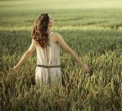 Jolie femme marchant sur le champ de maïs Photographie stock libre de droits