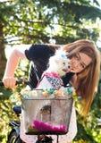 Jolie fille avec la bicyclette et le chien maltais Images libres de droits