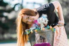Jolie fille avec la bicyclette et le chien maltais Photographie stock libre de droits