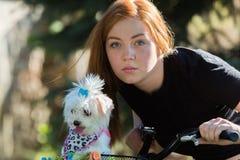 Jolie fille avec la bicyclette et le chien maltais Photo libre de droits