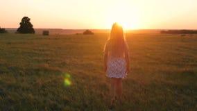 Jolie fille d'enfant marchant dans le pré au coucher du soleil clips vidéos