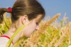 Jolie fille dans le domaine de maïs Photographie stock