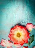 Jolie frontière de fleurs sur le fond de bleu de turquoise, vue supérieure Photos stock