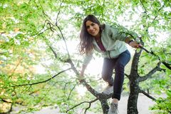Jolie jeune femme ayant le temps d'amusement en nature photos stock