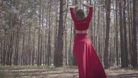 Jolie jeune femme dans la danse rouge de robe dans le beau contemporain de danse de danseur de forêt entre les pins Concept clips vidéos
