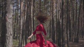 Jolie jeune femme expérimentée dans la danse rouge de robe dans le beau contemporain de danse de danseur de forêt entre banque de vidéos