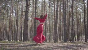 Jolie jeune femme sûre dans la danse rouge de robe dans le beau contemporain de danse de danseur de forêt entre les pins banque de vidéos