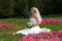 Jolie mariée Photographie stock