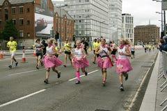 Jolies domestiques toutes dans une rangée - marathon 2017 de Liverpool Photo stock