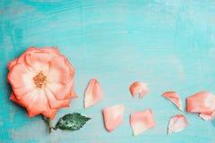 Jolies fleurs sur le fond chic minable de bleu de turquoise Carte de voeux Photos libres de droits