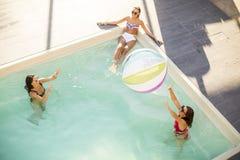 Jolies jeunes femmes jouant avec la boule dans la piscine Image stock