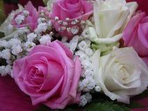 Jolies roses mignonnes de bouquet avec des souffles de bébé sur l'affichage, Canada, 2018 image libre de droits