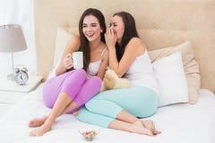 Jolis amis ayant le café sur le lit Images libres de droits