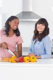 Jolis amis préparant des légumes Photo libre de droits
