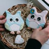 Jolis biscuits de hibou dans des mains Photographie stock