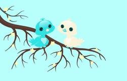 Jolis oiseaux. Image libre de droits