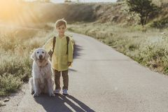 Jolly little kid walking with his pet royalty free stock photography