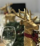 Is HE Jolly? After a ole Cabernet Merlot?. Is THAT rudolf on de plonk Stock Photos