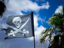 The jolly roger. On a cloudy sky and palms background Royalty Free Stock Photography