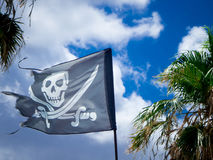 The jolly roger. On a cloudy sky  and palms background Stock Photos