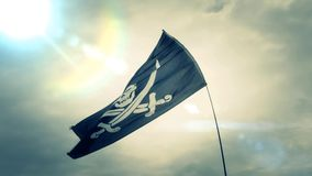 Jolly Roger flag slow motion stock footage