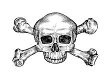 Jolly roger. Hand drawn human skull and crossbones. Sketch vector illustration Stock Images