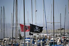 Jolly Roger and Masts. Jolly Roger Pirate flags stick out among the sea of boat masts Royalty Free Stock Photos