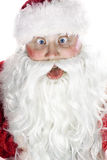 Jolly Santa Claus Royalty Free Stock Image