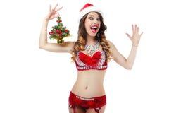 Jolly Snow Maiden animado ridículo con el árbol de navidad como regalo Imagen de archivo libre de regalías