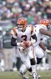 Jon Kitna. Cincinnati Bengals QB Jon Kitna. (Image taken from color slide stock photos